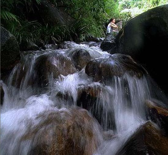 天然氧吧:厦门金光湖原始森林_厦门风景图片大全_中国