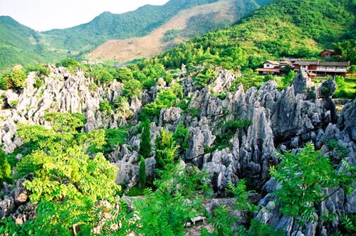 > 华东第一之千岛湖石林    千岛湖石林位于杭州地区西边的淳安县