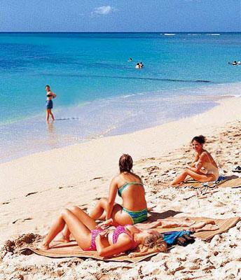 夏威夷海滩位于火奴鲁鲁岛上,浪漫在清晨的阳光中散开,在婆娑的树影下