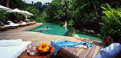 印尼巴厘岛 在热带雨林中漫步