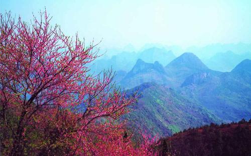 桂林尧山风景图片_桂林风景图片大全_中国国旅(上海)